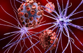 Окрелизумаб – принципиально новое лекарственное средство для лечения рассеянного склероза