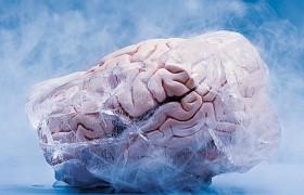 Ученые нашли способ воскрешать людей с замороженным мозгом