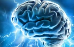 В критических ситуациях активность мозга повышается