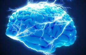 Мозг работает на собственном электрическом поле