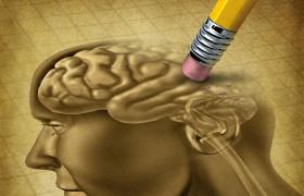 Диета против болезни Альцгеймера