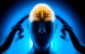 Активность мозга зависит от времени года
