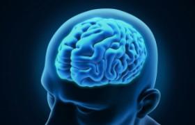 Мозг человека имеет ограниченный объем для запоминания информации