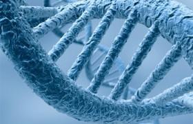 Обнаружен ген инсульта