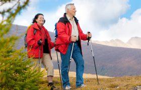 Ученые: прогулки на природе возвращают ясность мозга