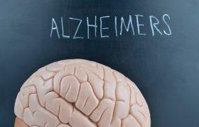 Обнаружен белок, играющий важную роль в развитии болезни Альцгеймера