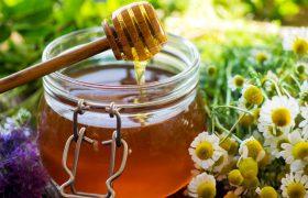 Корица, мед и орехи при сотрясении мозга