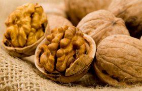 Грецкие орехи полезны для мозга
