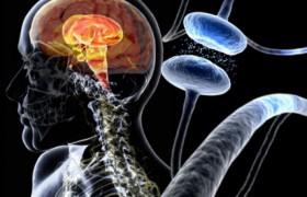 Ученые изобрели эффективный метод борьбы с болезнью Паркинсона