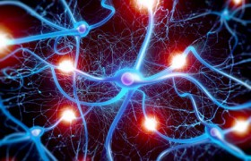 Allergan и Heptares подписали соглашение о разработке препаратов против нейродегенеративных заболеваний