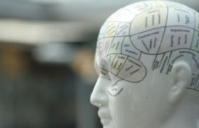 Способность сопереживать видна на снимках мозга