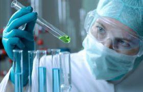 Стволовые клетки восстановят мозг после инсульта
