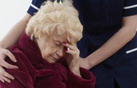 Ученые назвали растение, которое поможет бороться с Альцгеймером