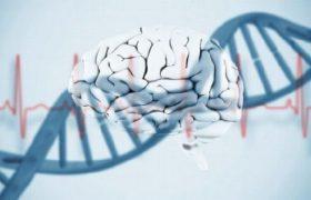 Ученые нашли «источник» биполярного расстройства