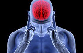 Особый человеческий ген ожирения приводит также к утрате мозгового вещества
