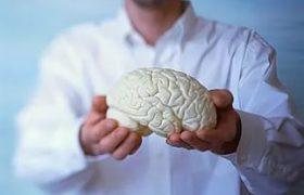 К старости мозг не обязан уменьшаться