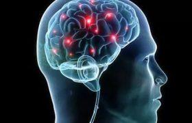 Человеческий мозг способен к адаптации