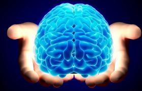 Мозг восстанавливается за две секунды