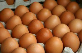 Протухшие яйца скрывают в себе лекарство против сосудистых отклонений