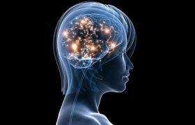Музыка стимулирует работу мозга