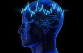 В старости человеческий мозг ржавеет – в буквальном смысле