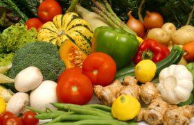 Вегетарианство способствует уменьшению мозга, доказали ученые