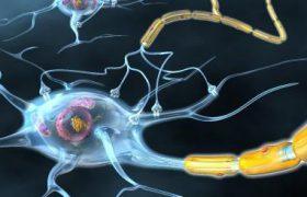 Рассеянный склероз: что делать