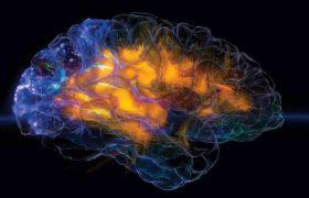 МРТ покажет способность к концентрации