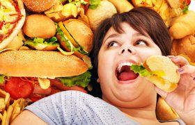 Фастфуд негативно влияет на мозг человека