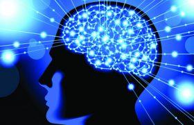 Оранжевый свет активизирует работу мозга