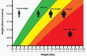 Лишний вес негативно влияет на когнитивные способности