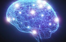 Найдена область мозга, отвечающая за эффект плацебо