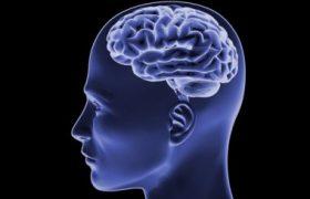 Стимуляция мозга способна повысить выносливость