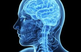 Низкое давление провоцирует атрофию мозга