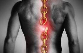 Восстановиться после травмы спинного мозга реально, доказали эксперименты