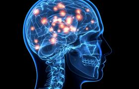 Ожирение будут лечить электростимуляцией мозга
