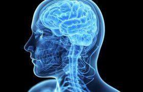 Низкое давление повышает риск атрофии мозга