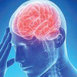 Запасные клетки восстановят мозг после инсульта