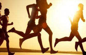 Для повышения интеллекта необходимы активные физические упражнения
