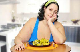 Склонность к ожирению заложена в мозге