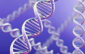 Ученые нашли генетическую связь диабета и болезни Альцгеймера