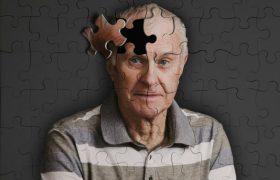 Учёные нашли ген, отвечающий за процессы старения в мозге