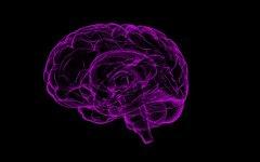 Ученые научились «стирать» плохие воспоминания