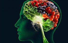 Диета влияет на работу мозга