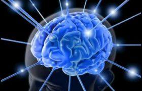 Интернет негативно влияет на работу мозга