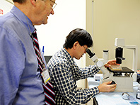 Ученые в шаге от победы над болезнью Паркинсона