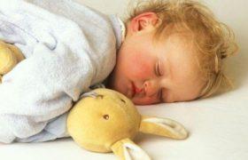 Сон помогает закрепить изученный материал в памяти