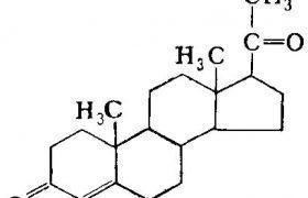 Прогестерон обещает стать новым средством лечения травм мозга