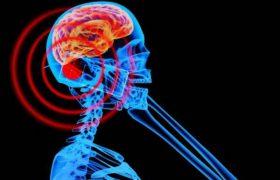 Мобильные телефоны опасны для здоровья мозга