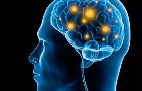 Иммунная система может быть виновна в возникновении болезни Паркинсона